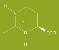 kis-molekula